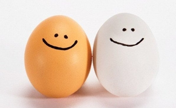 Protein-Rich Foods | Eggs