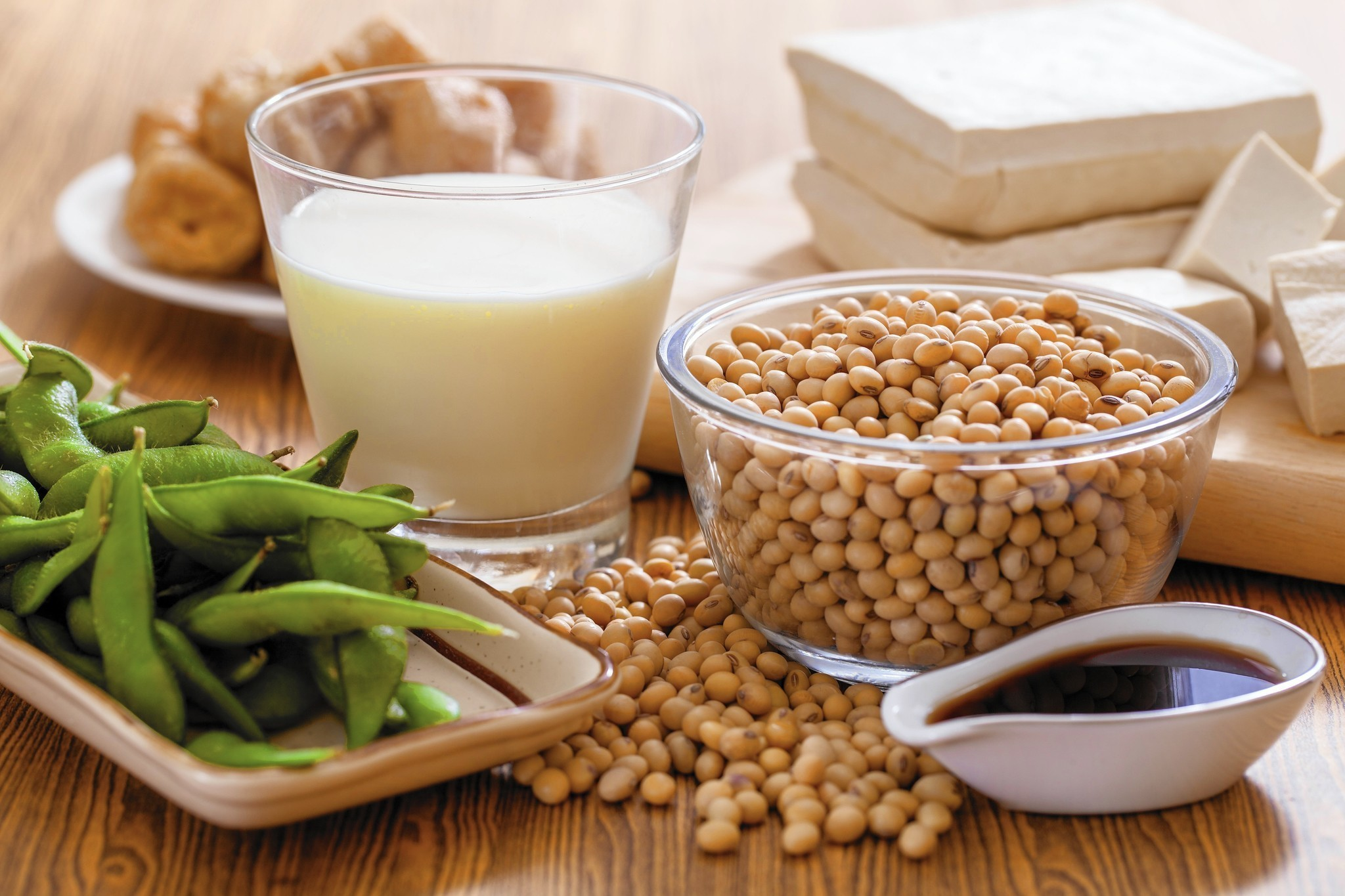 Protein-Rich Foods | soy